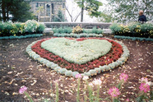 Suzy, Garden Art